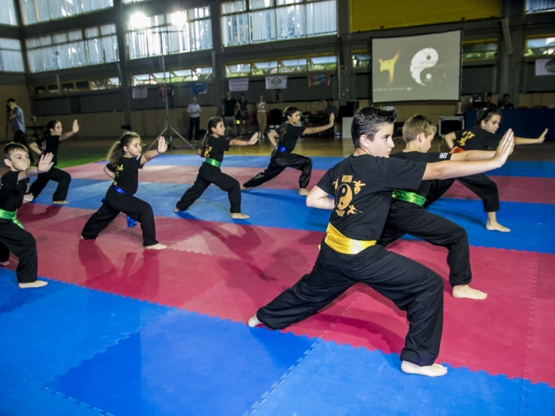 1st Original Martial Arts Festival 2019
