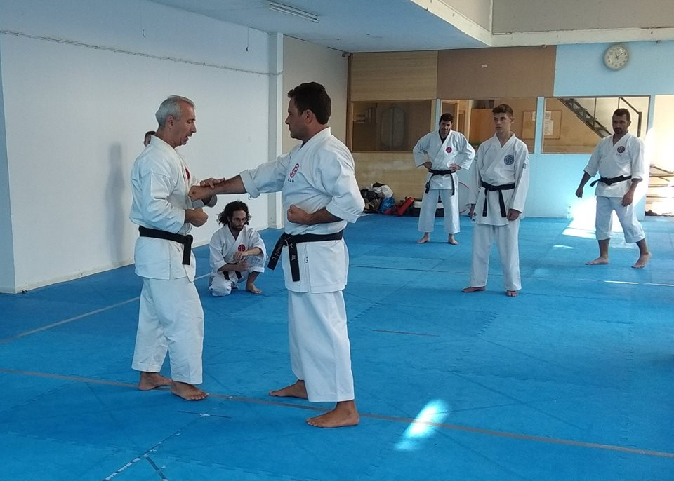 SEMINAR HELLENIC SHITOKAI KARATE DO 8 & 9 - 9 - 2018